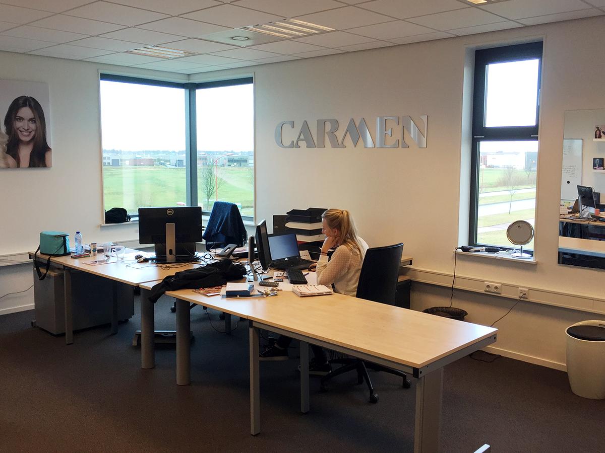 glen dimplex CARMEN RVS look reclame letters heerenveen Friesland